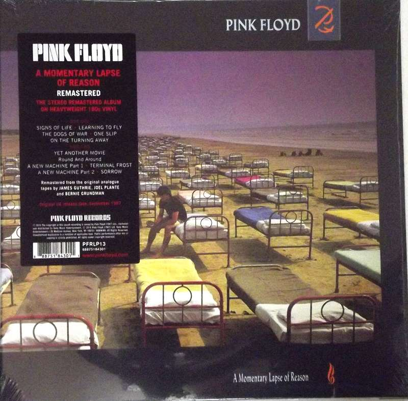 A Momentary Lapse Of Reason   Just for the Record