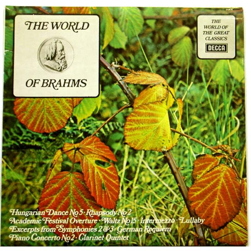 The World of Brahms